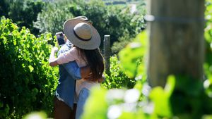 Romantic couple in love at a vineyard