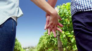 Mid section of couple standing with hand in hand in vineyard