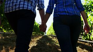 Mid section of couple walking hand in hand through vineyard