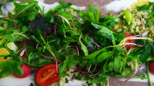 Delicious vegetable salad on plate