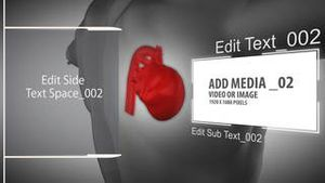 Heart and body Project AE Version 4