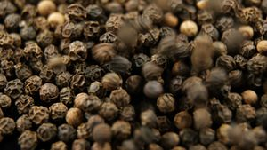 Black pepper falling on black background 4k