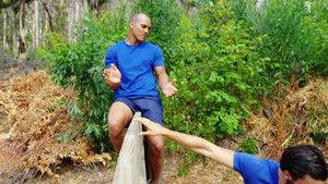 Male trainer assisting fit man to climb over wooden wall during obstacle course 4k