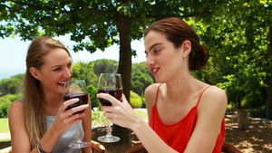 Female friends toasting glasses of red wine 4k