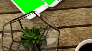 Digital tablet, mobile phone, coffee, pot plant and keyboard on table 4k