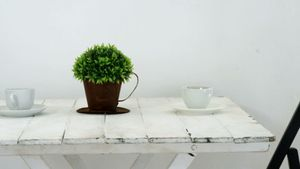 Cups and pot plant on wooden table 4k