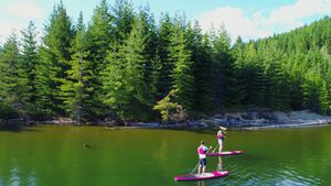 Couple rowing a stand up paddle board in the river 4k