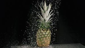 Water raining on pineapple in super slow motion