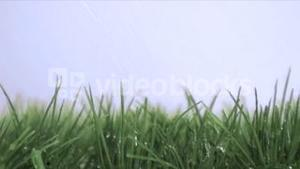 Rain in super slow motion falling on the grass