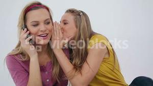 Woman whispering to her friends whos using a phone