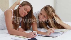 Serious young women studying while lying