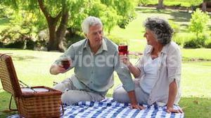 Mature people sitting on a blanket with glasses of red wine