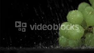 Raisin grapes in a super slow motion watering by the rain