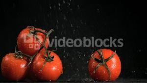 Tomatoes in super slow motion receiving raindrops