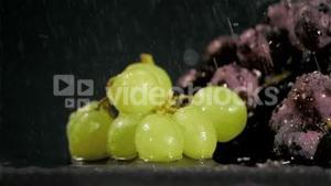 Bunches of grapes in super slow motion receiving water