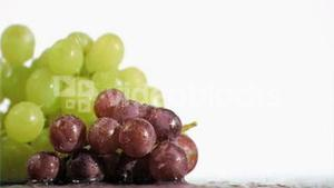Delightful grapes in super slow motion receiving water
