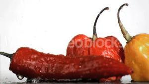 Spicy vegetables in super slow motion being wet