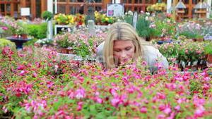 Customer smelling at flowers