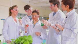 Biology students with plants a tomato and a tablet pc