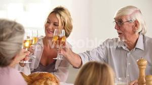 Family toasting at family dinner