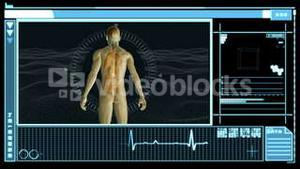 Medical interface showing human form with organs