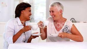 Retired women catching up and laughing together