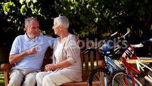 Mature couple talking together in a park