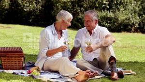 Elderly couple drinking white wine at a picnic