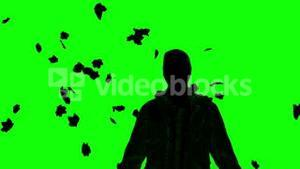 Silhouette of a man under falling leaves on green screen
