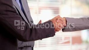Businesswoman shaking hand of a businessman