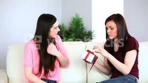 Attractive woman offering a gift to her friend