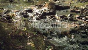 Video of watercourse in nature