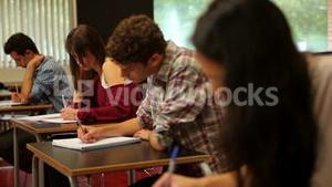 Concentrating students sitting an exam in a classroom
