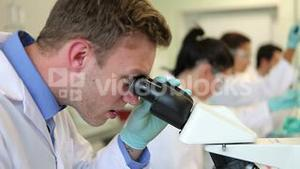 Team of science students working in the laboratory