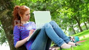 Student sitting against a tree using her laptop