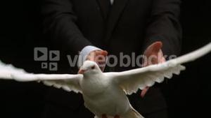 Groom releasing a dove on black background