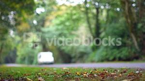 Car driving down a road surrounded by woods