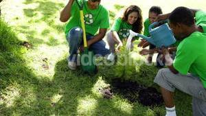 Environmental activists watering a new tree in the park