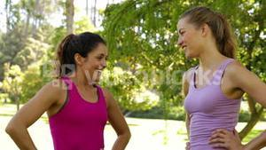 Fitness friends chatting before working out in the park