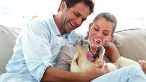 Cute couple petting their labrador dog on the couch