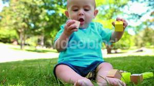 Adorable baby boy playing with building blocks on the grass