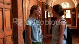 Happy students chatting together in a hall