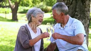 Senior couple relaxing in the park together having champagne