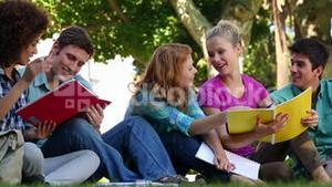 Students sitting on grass and chatting together