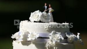 Wedding cake with cake toppers