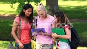 Students chatting together outside