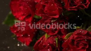 Bouquet of red roses falling onto wet surface