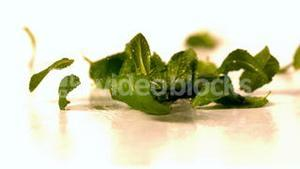 Fresh mint leaves falling onto white surface