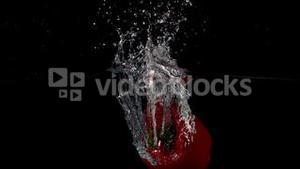 Red pepper falling in water on black background