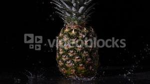 Water raining on pineapple on black background
